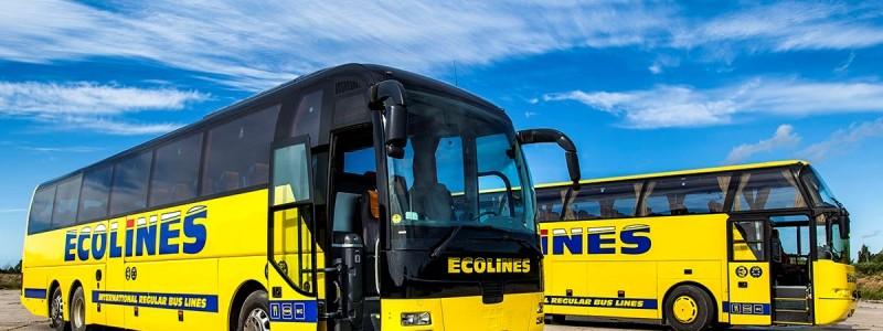 ecolines-800x300