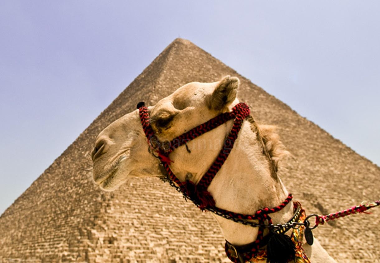 egypt-vacation4