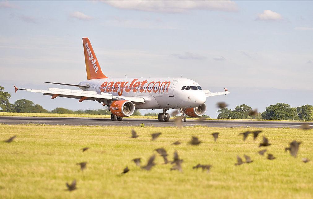 Розпродаж авіаквитків на літо від EasyJet! Перельоти всередині Європи зі знижкою 20%